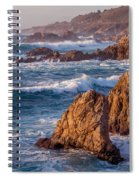 January In Big Sur Spiral Notebook