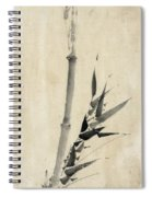 Japan: Bamboo, C1830-1850 Spiral Notebook