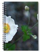 Japanaese Anemone Spiral Notebook
