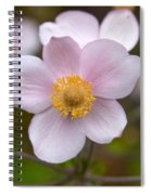 Japanese Anemone Spiral Notebook