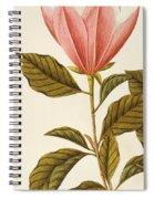 Japanese Bigleaf Magnolia Spiral Notebook