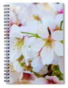 Japanese Cherry Tree Blossoms 2 Spiral Notebook