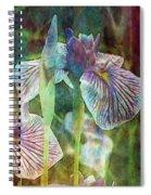 Japanese Iris Tall 2694 Idp_4 Spiral Notebook