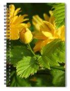 Japanese Kerria #2 Spiral Notebook