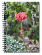 Japanese Lantern Hibiscus Spiral Notebook