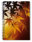 Japanese Maple Leaf Spiral Notebook