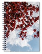 Japanese Maple Red Lace - Horizontal View Downwards Right Spiral Notebook