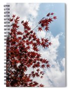 Japanese Maple Red Lace - Vertical Up Right Spiral Notebook