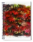 Japanese Maple Under The Willow Spiral Notebook