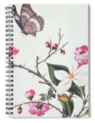 Japonica Magnolia And Butterflies Spiral Notebook