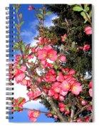 Japonica Spiral Notebook