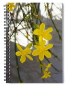 Jasmine On The Wall Spiral Notebook