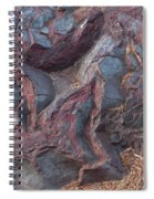 Jaspilite Spiral Notebook