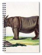 Javan Rhinoceros, Endangered Species Spiral Notebook