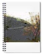 Jaws  Spiral Notebook