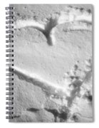 Winter Heart Spiral Notebook