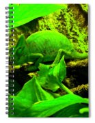 Jeanette Spiral Notebook