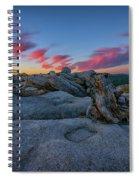 Jeffrey Pine Dawn Spiral Notebook