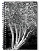 Jelks Fingerling 1 Spiral Notebook