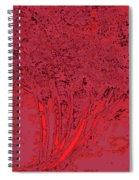 Jelks Fingerling 18 Spiral Notebook