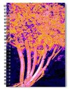 Jelks Fingerling 3 Spiral Notebook