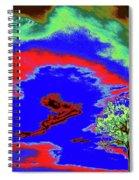 Jelks Pine 11 Spiral Notebook