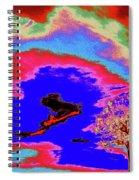 Jelks Pine 12 Spiral Notebook