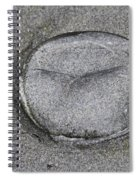 Jelly Fish On The Beach Spiral Notebook