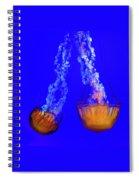 Jellyfish Art Spiral Notebook