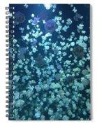 Jellyfish Collage Spiral Notebook