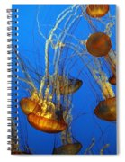Jellyfish Family Spiral Notebook