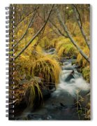 Jenny Creek In Autumn Spiral Notebook