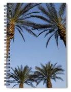 Jerusalem Palms Spiral Notebook