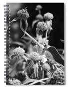 Jerusalem Sage Spiral Notebook