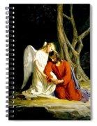 Jesus In Gethsemane Spiral Notebook