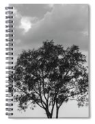 Jetty Tree Spiral Notebook