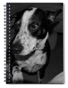 Jimmy Spiral Notebook