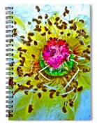 Jive Spiral Notebook