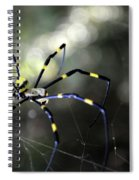 Jorogumo Queen  Spiral Notebook