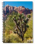 Joshua Tree Spiral Notebook