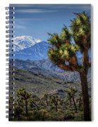 Joshua Tree In Joshua Park National Park With The Little San Bernardino Mountains In The Background Spiral Notebook