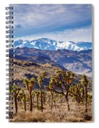 Joshua Tree National Park 2 Spiral Notebook