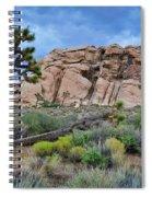 Joshua Tree National Park Summer Evening Spiral Notebook