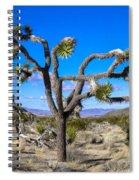 Joshua Tree National Park Winter's Day Spiral Notebook