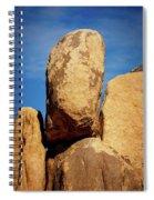 Joshua Tree Np 1 Spiral Notebook