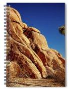 Joshua Tree Np 3 Spiral Notebook