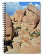 Joshua Tree White Tank Boulders Spiral Notebook
