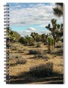 Joshua Tree's Spiral Notebook