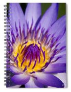 Journey Into The Heart Of Love Spiral Notebook