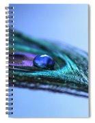 Journey Of Blue Spiral Notebook